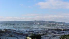 Mar y cielos y gaviotas tranquilos almacen de metraje de vídeo