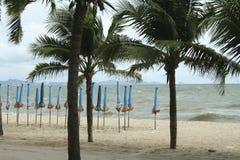Mar y la costa en un día de invierno tempestuoso, visto de una playa adentro Fotografía de archivo