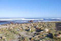 Mar y olas oceánicas que vienen adentro en la arena en el punto del cabo Foto de archivo libre de regalías