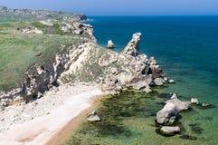 Mar y un rinoceronte Imagen de archivo