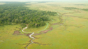 mara masaivåtmarker Royaltyfria Foton