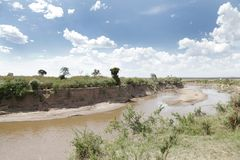 Mara river in the midst of savannah in Masai Mara National Park Royalty Free Stock Photo