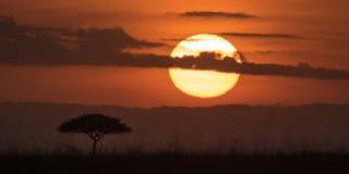 Mara Sunrise Stockfoto