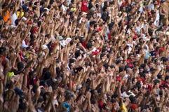 Maracana Stock Image