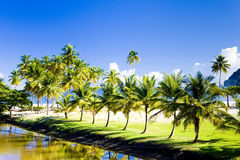 Maracas Bay. In island of Trinidad Royalty Free Stock Images