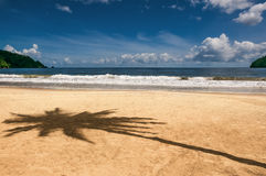 Maracas bay Trinidad and Tobago beach palm tree shadow Caribbean Stock Photo