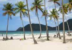Maracas beach in Trinidad Royalty Free Stock Image