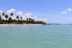 Maragogi, Alagoas - Βραζιλία Στοκ εικόνες με δικαίωμα ελεύθερης χρήσης