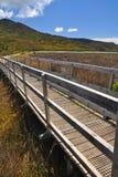 Marahau - έναρξη της εθνικής διάβασης πεζών πάρκων του Abel Tasman Στοκ εικόνες με δικαίωμα ελεύθερης χρήσης