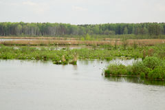 Marais Image stock