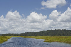 Marais de Kaw Stock Image