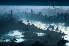 Marais de Kemeri dans le coucher du soleil Photographie stock