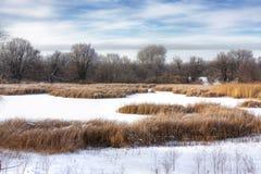 Marais de l'hiver Image libre de droits