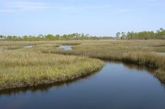 Marais de marée Photographie stock libre de droits