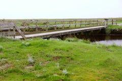 Marais de marée Photos libres de droits