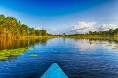 Marais de Matapica Photos libres de droits