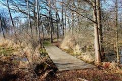 Marais de pont Image stock