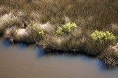 Marais de sel, la Caroline du Nord Image stock