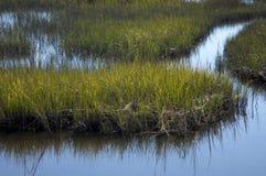 Marais de sel, la Caroline du Nord photo libre de droits