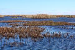 Marais de sel sous le ciel bleu Images libres de droits