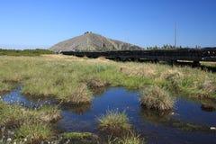 Marais de tourbe aux montagnes géantes Image stock