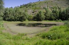 Marais entouré par des collines un jour chaud d'été Photo stock
