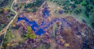Marais et forêt image stock