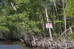 Marais, la Floride, Etats-Unis Images libres de droits