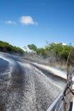 Marais, la Floride, Etats-Unis Photographie stock libre de droits