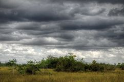 Marais paysage, nuages Photo libre de droits