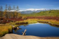 Marais près de lac Leprindo Photo stock