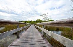 Marais stationnement national, la Floride image libre de droits