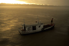 marajo острова Амазонкы Бразилии Стоковое фото RF