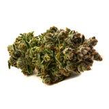 Marajuana medico Fotografia Stock