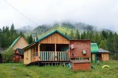 Maralnik Altai republik, Ust-Koksinsky område, Ryssland, September, 01, 2016 Inget `en för kant för läger`-cederträ, Royaltyfri Foto