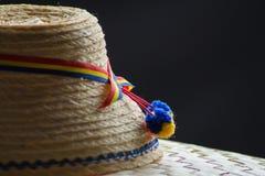 Maramures den traditionella hatten Arkivfoton