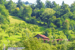 Maramures. Landscape from Maramures in the north of Romania Stock Photography