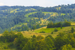 Maramures. Landscape from Maramures in the north of Romania Royalty Free Stock Image