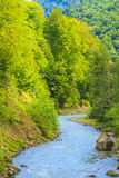 Maramures Royalty Free Stock Images