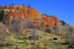 Maramures Landschaft stockfoto