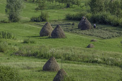 Maramures, romania, europe, landscape. View of a typical landscape of maramures Stock Images