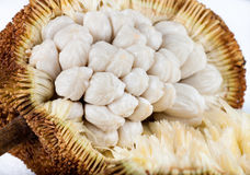 Marang fruit Royalty Free Stock Images