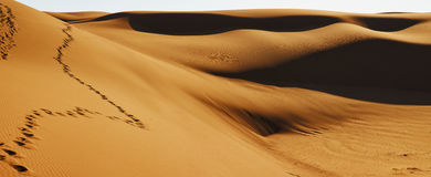 Maranjab desert dunes Royalty Free Stock Images