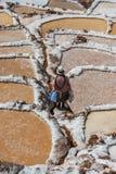 Maras-Salzbergwerke peruanische Anden Cuzco Peru Stockbild