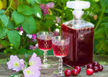Maraschino liqueur with fresh cherries stock images
