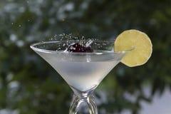 Maraschinokörsbäret som tappas i coctailexponeringsglas - lagerföra fotoet arkivfoto