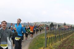 Maratón Deutsche Weinstrasse Fotos de archivo