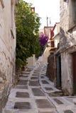 Marathokampos on Samos Stock Images