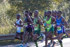 Marathon南非同志 库存图片