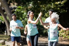 Marathon athletes running in the park royalty free stock images